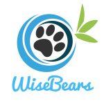 Wywiad ze mną na Wisebears.pl :)
